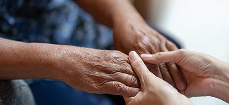 senior partners care